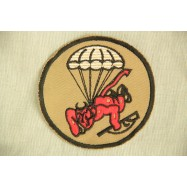 508th Parachute Infantry...