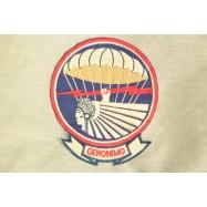 501st Parachute Infantry...